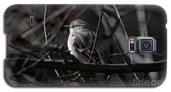 To Kill A Mockingbird Galaxy S5 Case