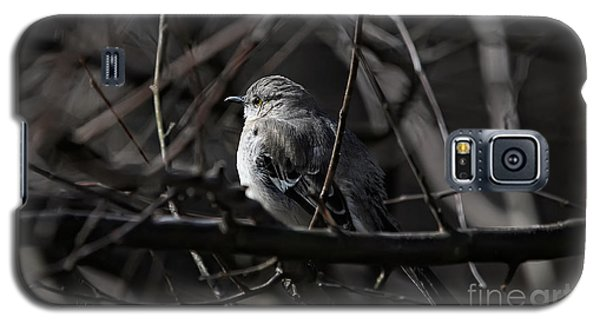 To Kill A Mockingbird Galaxy S5 Case by Lois Bryan