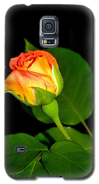 Galaxy S5 Case featuring the photograph To My Beloved by Ester  Rogers