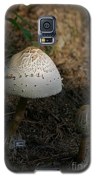 Galaxy S5 Case featuring the photograph Toadstool by Tannis  Baldwin