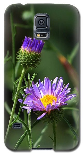 Galaxy S5 Case featuring the photograph Touch Of Spring by Mistys DesertSerenity