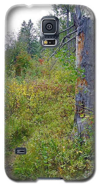 Galaxy S5 Case featuring the photograph Trail Sign by Jim Sauchyn