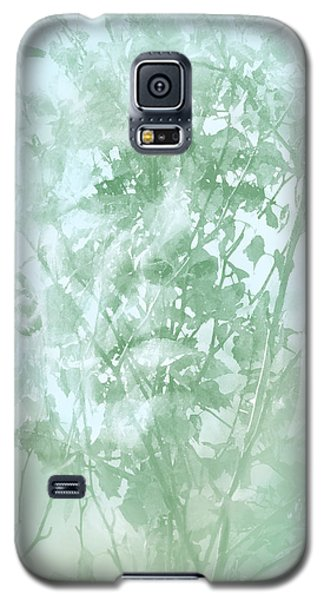 Transient Galaxy S5 Case by Richard Piper