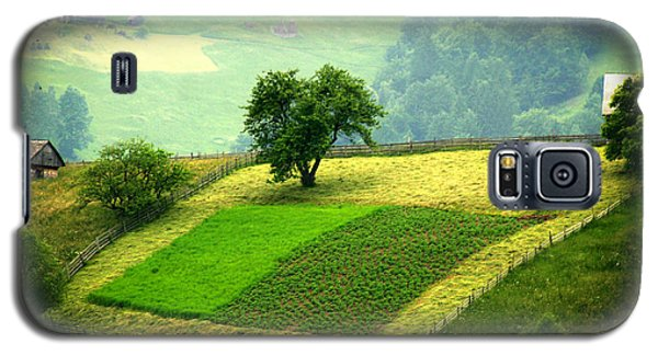Tree And Field Galaxy S5 Case by Emanuel Tanjala