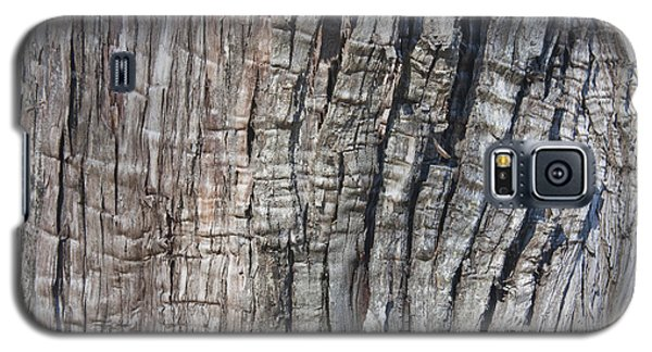 Galaxy S5 Case featuring the photograph Tree Bark No. 1 Stress Lines by Lynn Palmer