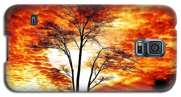 Tree Light Galaxy S5 Case