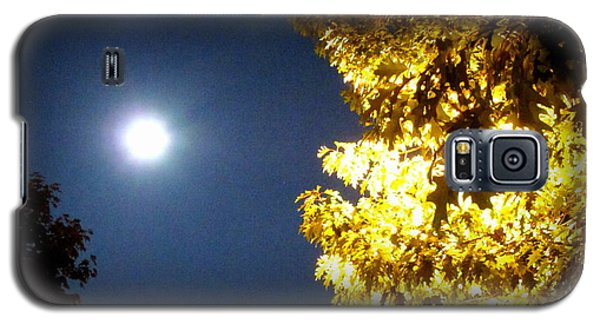 Tree Of Glory 1 Galaxy S5 Case
