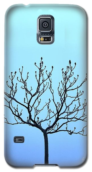 Tree With The Blues Galaxy S5 Case