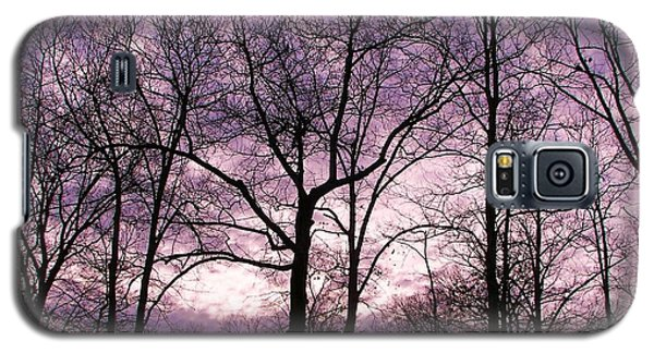 Galaxy S5 Case featuring the photograph Trees In Glorious Calm by Pamela Hyde Wilson