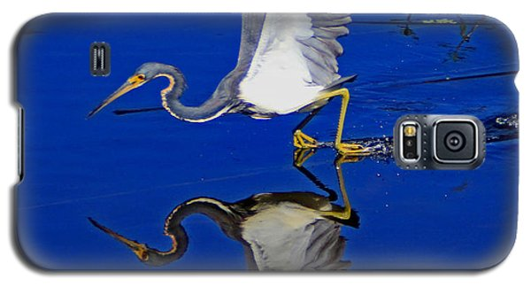 Galaxy S5 Case featuring the photograph Tri-color Heron Water Ski by Larry Nieland