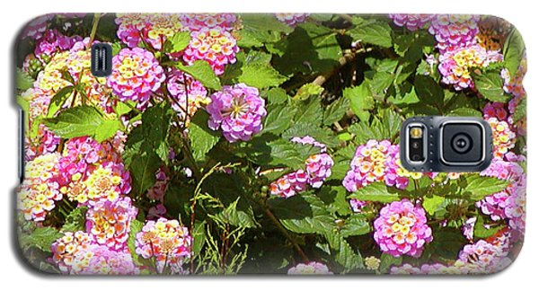 Galaxy S5 Case featuring the photograph Tropical Lantana by Roena King