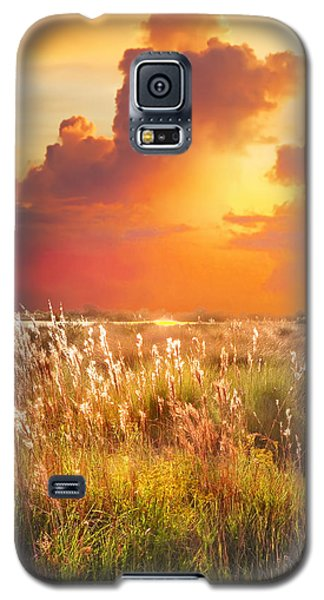 Tropical Savannah Galaxy S5 Case by Francesa Miller