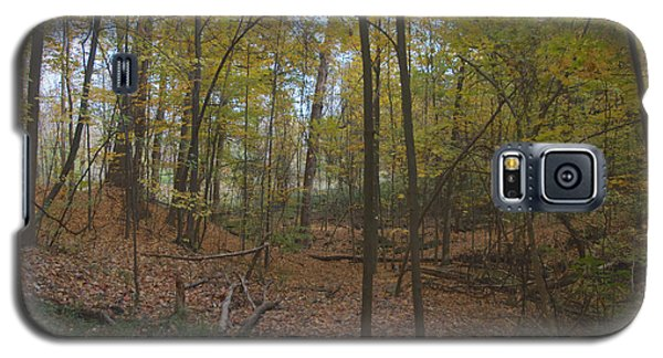 Galaxy S5 Case featuring the photograph Tryon Park by William Norton