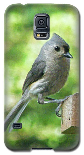 Galaxy S5 Case featuring the photograph Tufted Titmouse by Lizi Beard-Ward
