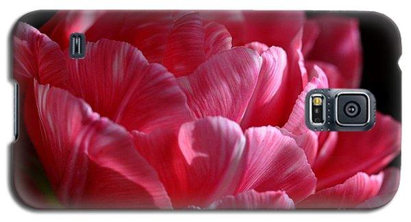 Tulipe Galaxy S5 Case by Sylvie Leandre