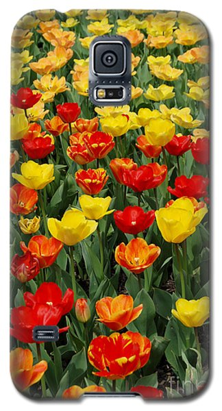 Galaxy S5 Case featuring the photograph Tulips by Eva Kaufman