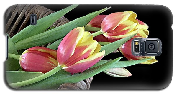 Galaxy S5 Case featuring the photograph Tulips From The Garden by Sherry Hallemeier