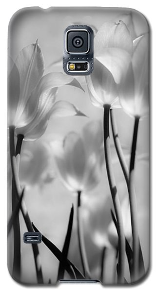 Galaxy S5 Case featuring the photograph Tulips Glow by Michelle Joseph-Long