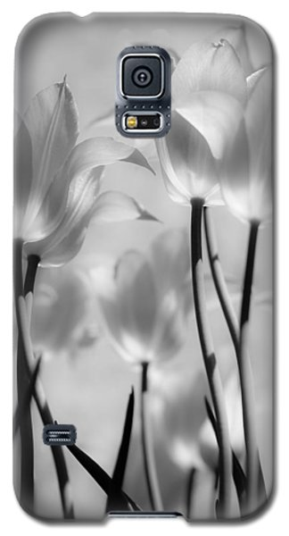 Tulips Glow Galaxy S5 Case