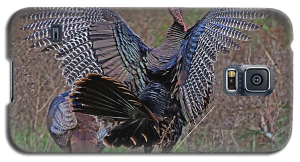 Galaxy S5 Case featuring the photograph Turkey Revelation by Larry Nieland