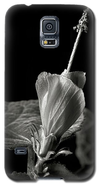 Turk's Cap In Black And White Galaxy S5 Case