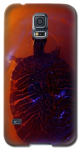 Turtle In Florida  Galaxy S5 Case