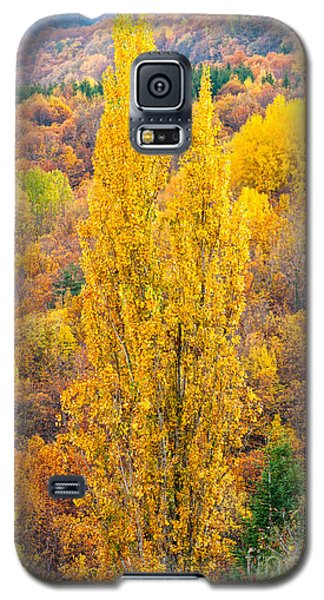 Galaxy S5 Case featuring the photograph Tuscany Landscape  by Luciano Mortula