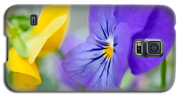 Galaxy S5 Case featuring the photograph Two Pansies Ln Love by Luana K Perez