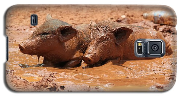 Galaxy S5 Case featuring the photograph Two Pigs In A Puddle by Nola Lee Kelsey