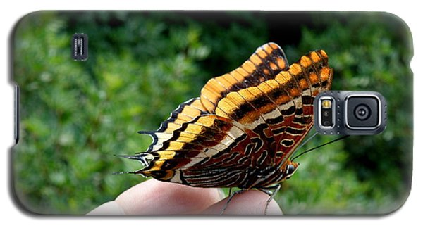 Galaxy S5 Case featuring the photograph Two Tailed Pasha by Lainie Wrightson