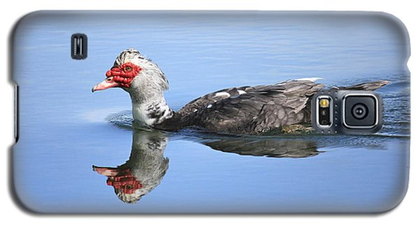 Galaxy S5 Case featuring the photograph Ugly Duckling by Penny Meyers
