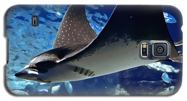 Underwater Flight Galaxy S5 Case by DigiArt Diaries by Vicky B Fuller