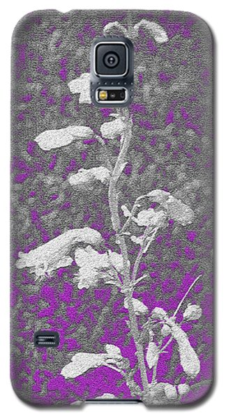 Galaxy S5 Case featuring the photograph Untitled 101 by Vilas Malankar