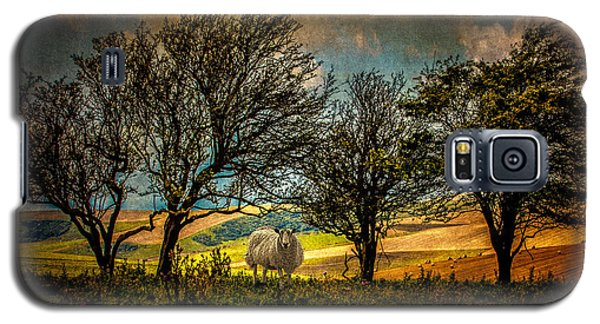 Galaxy S5 Case featuring the photograph Up On The Sussex Downs In Autumn by Chris Lord