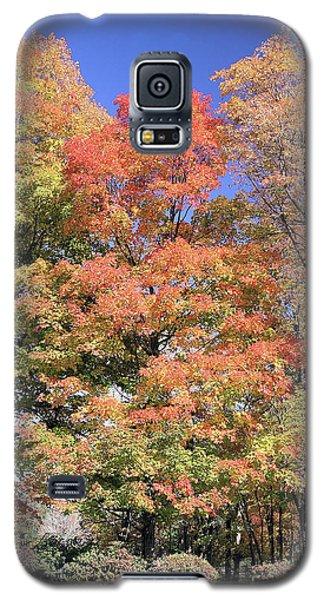 Upj Campus Autumn  Galaxy S5 Case