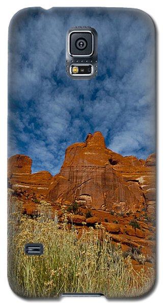 Utah Color  Galaxy S5 Case