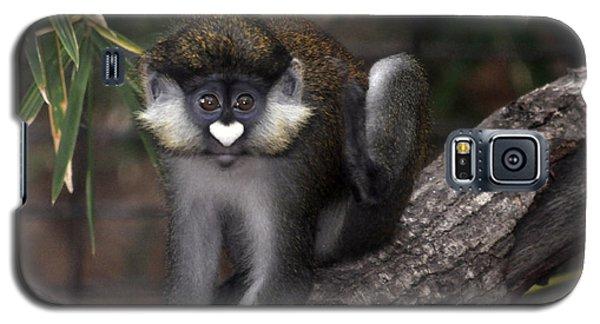 Valentine Monkey Galaxy S5 Case