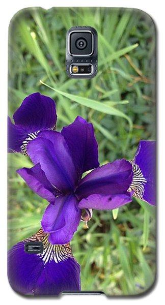 Velvet Royale Galaxy S5 Case