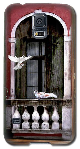 Venice Window Galaxy S5 Case