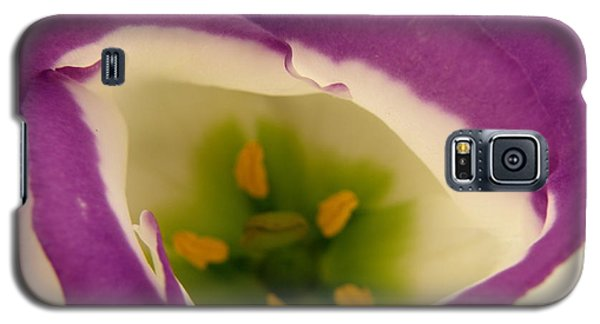 Galaxy S5 Case featuring the photograph Vibrant by Lainie Wrightson