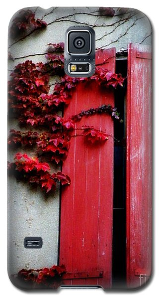 Vines On Red Shutters Galaxy S5 Case