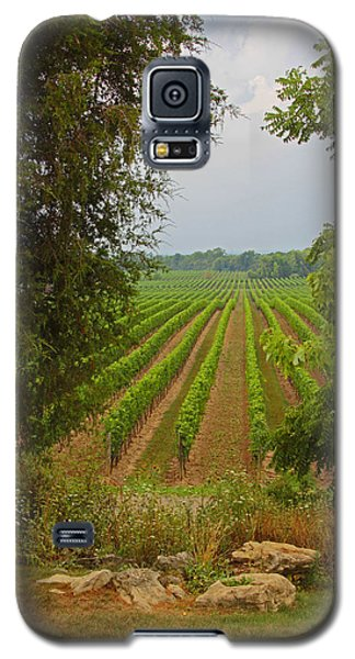 Galaxy S5 Case featuring the photograph Vineyard On The Bench by John Stuart Webbstock