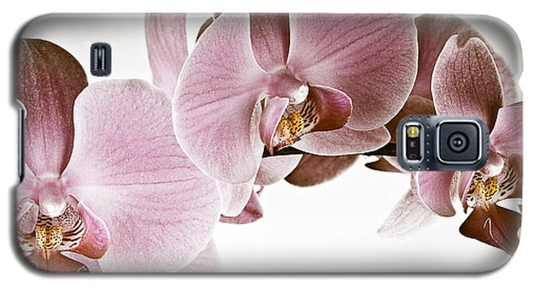 Vintage Orchid Galaxy S5 Case by  Onyonet  Photo Studios