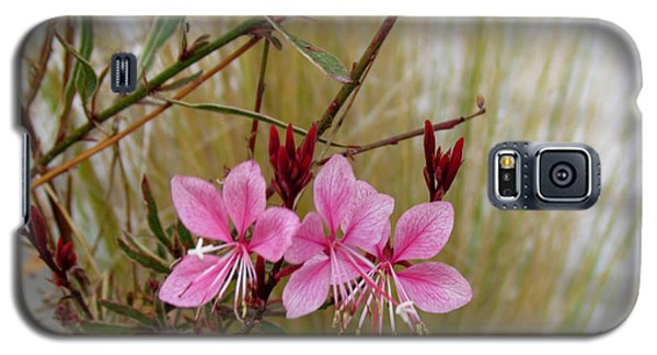 Visiting The Pink Guara Galaxy S5 Case