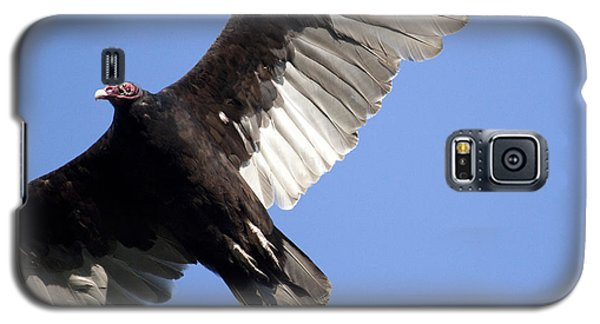 Vulture Galaxy S5 Case by Jeannette Hunt