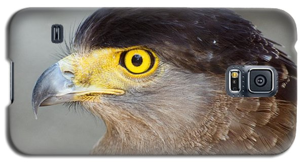 Galaxy S5 Case featuring the photograph Waiting For Prey  by Fotosas Photography