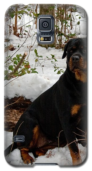 Galaxy S5 Case featuring the photograph Waiting by Karen Harrison