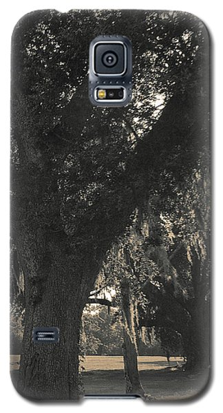 Galaxy S5 Case featuring the photograph Walk Through The Oaks by Brian Wright