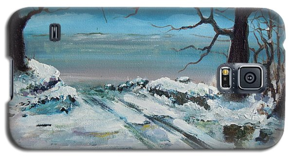 Galaxy S5 Case featuring the painting Washoe Winter by Dan Whittemore