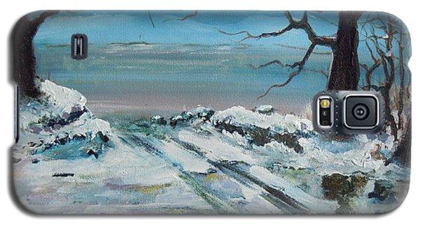 Washoe Winter Galaxy S5 Case by Dan Whittemore